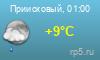 Погода Приисковый