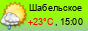 погода - Шабельское